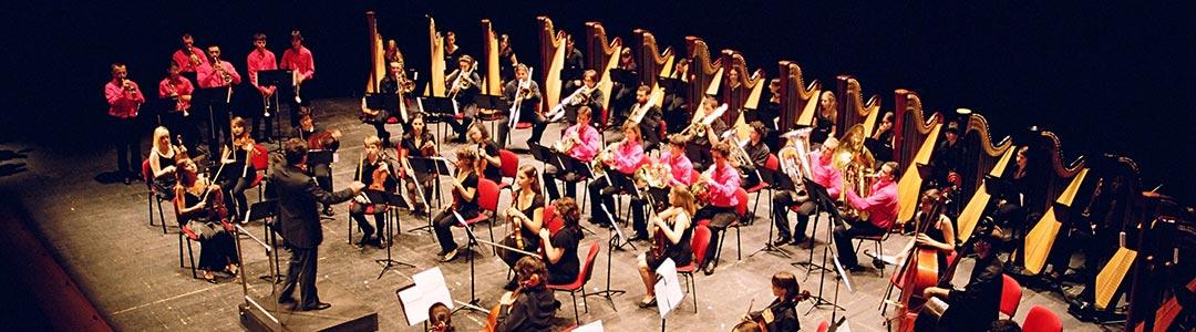 Istituzione per l'alta formazione musicale
